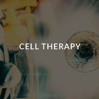 cell-therapy-ceutiqus-biopharmaceutiqals-academy-masterclass-bam-atmp-experts