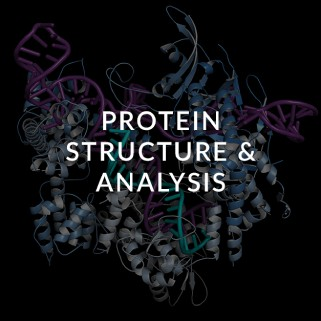protein-structure-and-analysis-ceutiqus-biopharmaceutiqals-academy-masterclass-bam-atmp-experts