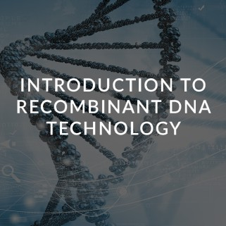 recombinant-dna-technology-ceutiqus-biopharmaceutiqals-academy-masterclass-bam-atmp-experts